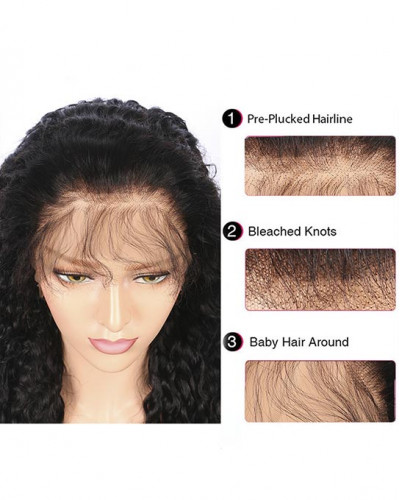 Pre-plucked transparent lace|human hair|body wave|lace front wig